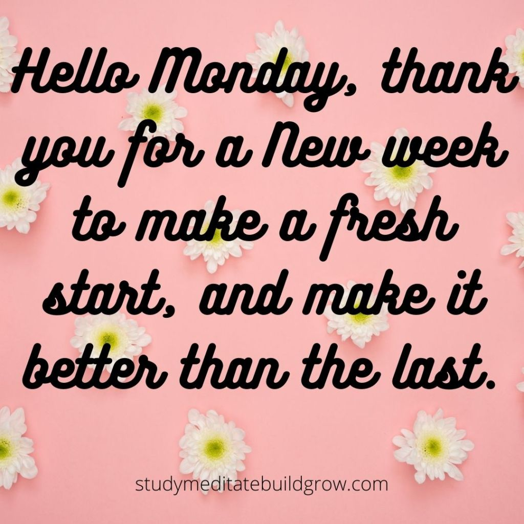 Pink background with white flower and a message about Monday.